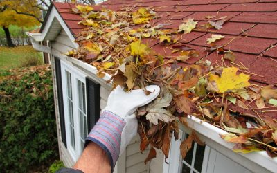5 Recommended Fall Season Tips