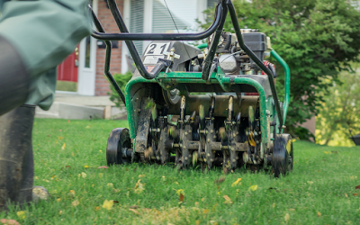 Reasons to Aerate Your Lawn